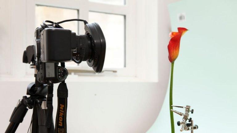 Cómo construir un estudio fotográfico doméstico: todo lo que necesita se puede encontrar aquí