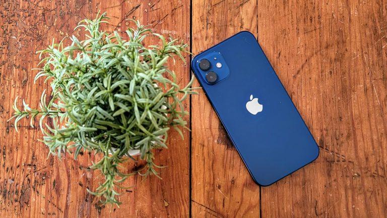 El mejor iPhone de 2021: ¿Qué iPhone es el adecuado para usted?